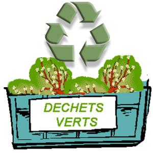 Ramassage de déchets de jardin